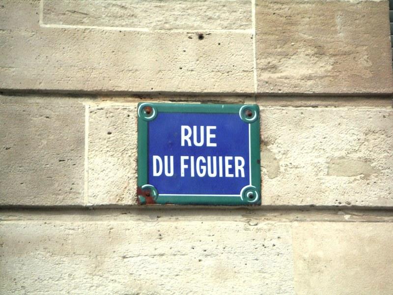 Rue_fig