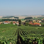 vineyards to visit in france
