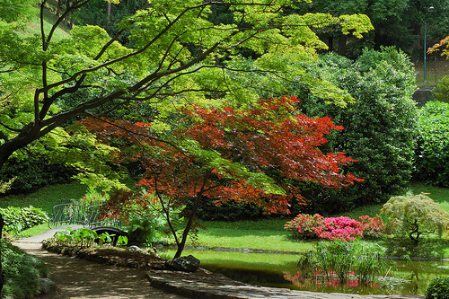 Villa Melzi Oriental Garden