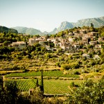southern france wine region