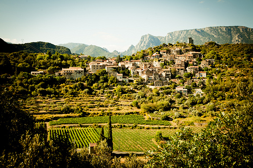 languedoc rouissillon wine region southern france