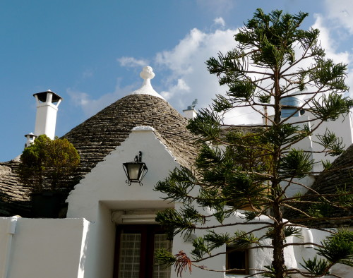 trulli with pine tree alberobello