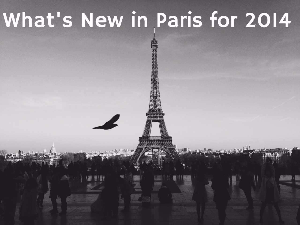New in Paris for 2014