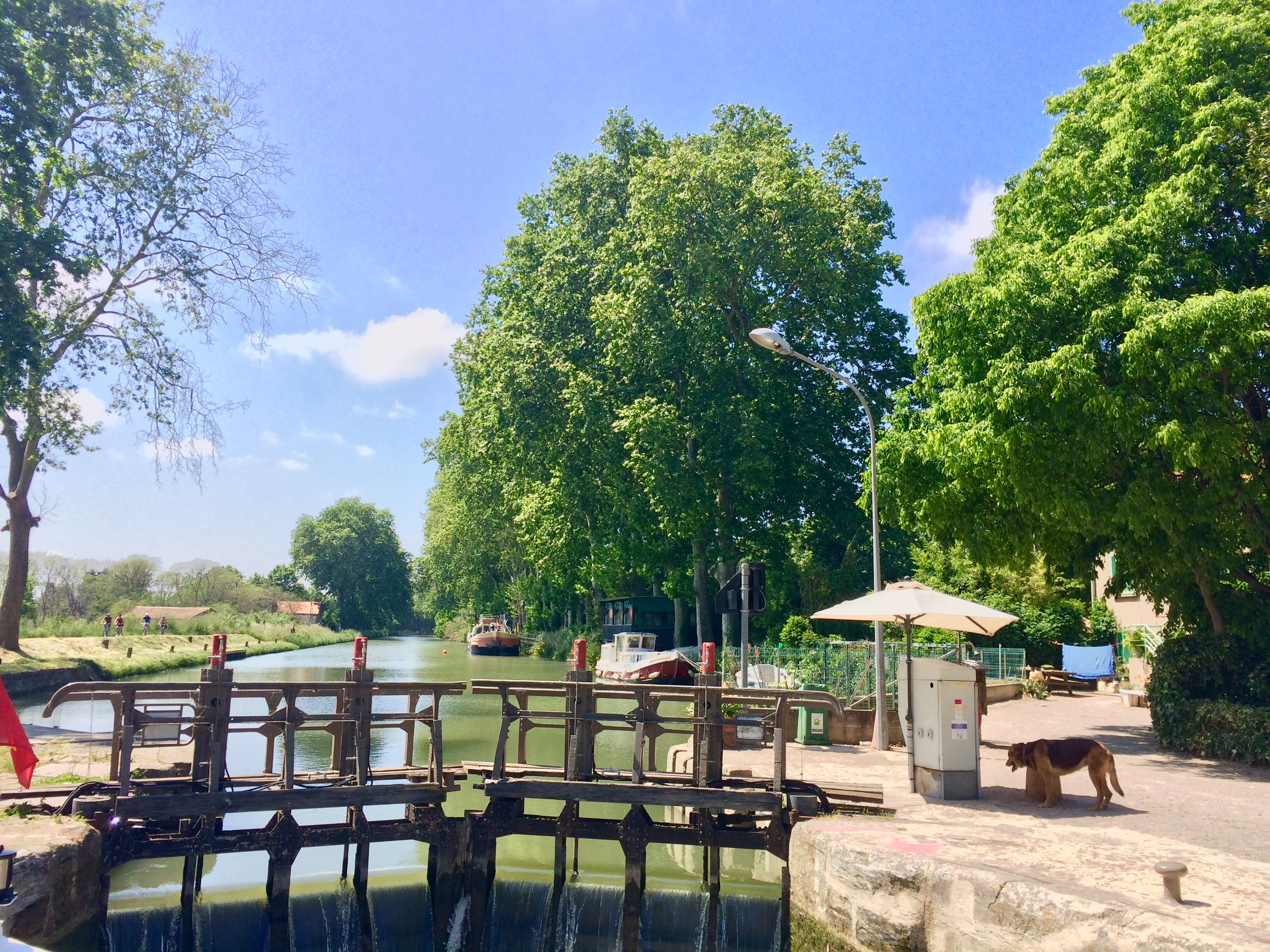 take a barge cruise in france - canal du midi